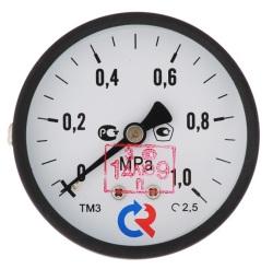 """Манометр TM310T Dy 63 с задним подключением 1/4"""", 0-10 бар"""
